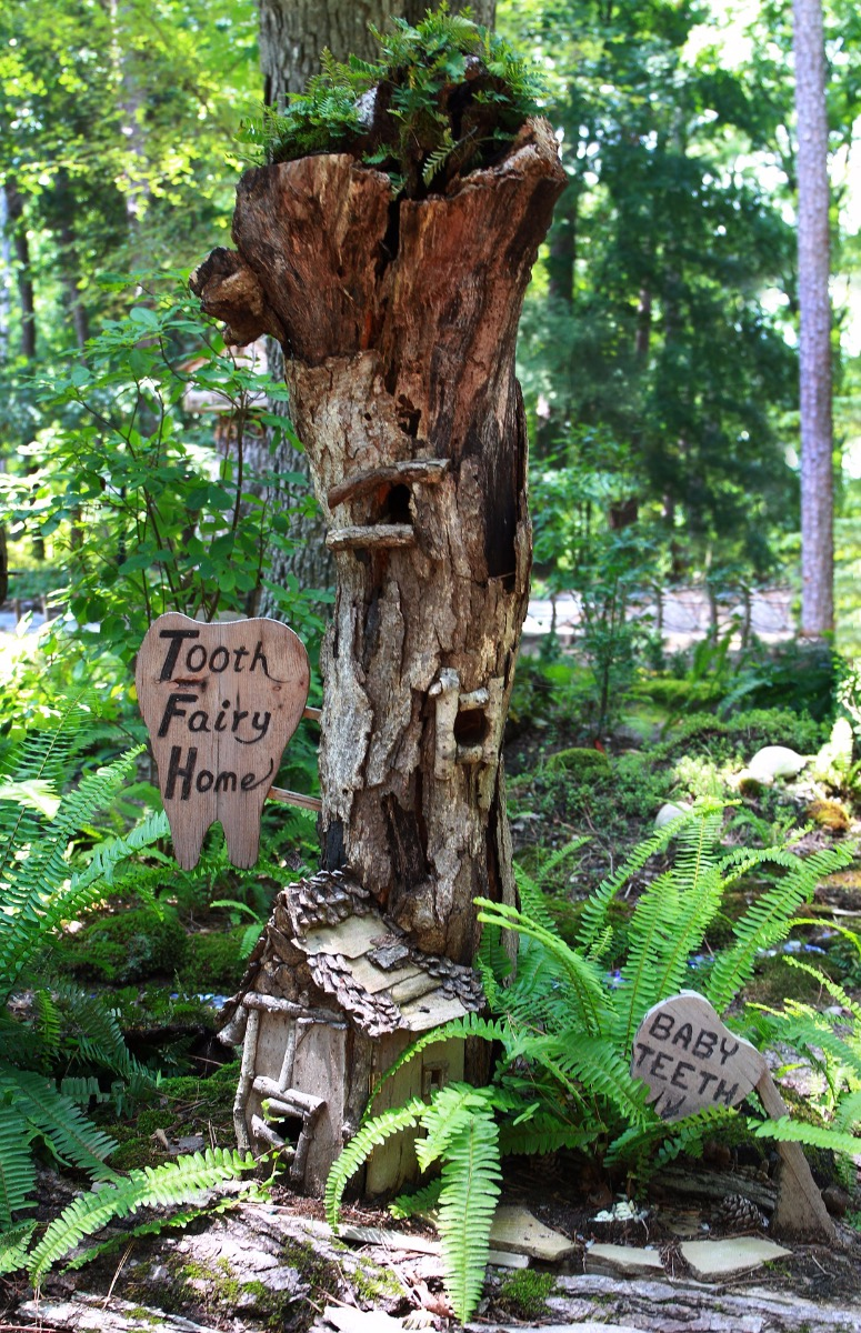tooth fairy house